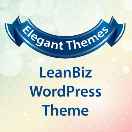 Elegant Themes LeanBiz WordPress Theme