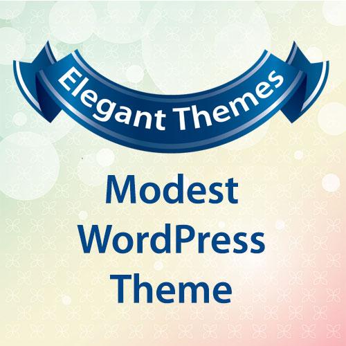 Elegant Themes Modest WordPress Theme