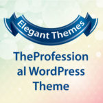 Elegant Themes TheProfessional WordPress Theme