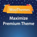 WooThemes Maximize Premium Theme