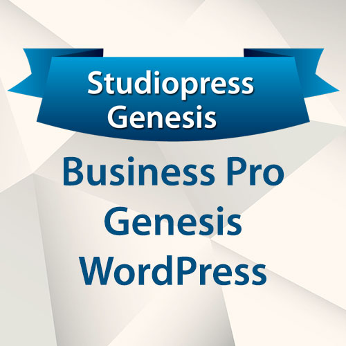 StudioPress Business Pro Genesis WordPress Theme | GPL Guru