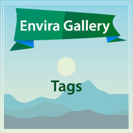 Envira Gallery Tags
